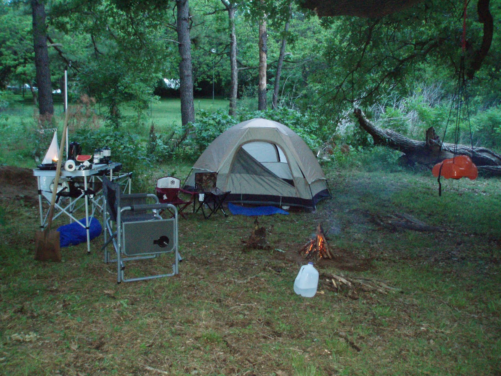 Camping In The Woods Images