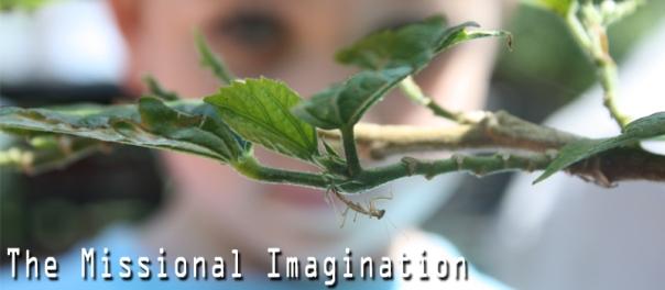 Missional-Imagination